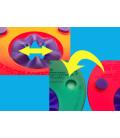 Manguitos Discos para bebés y niños