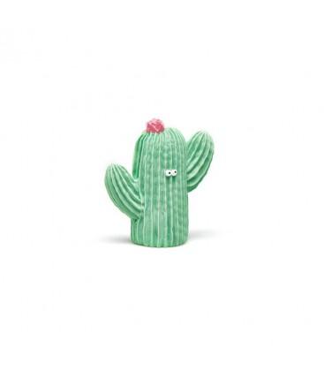 Mordedor Cactus Frijolito